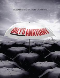 greys-anatomy-season-6-poster